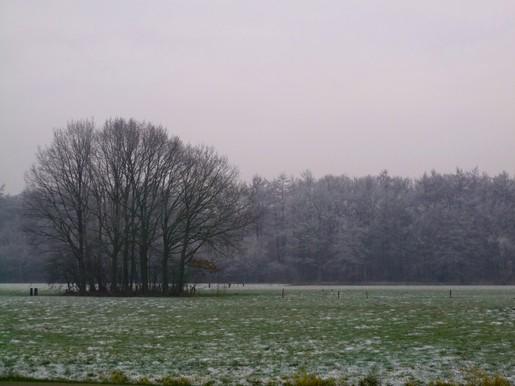 Edjo.nl | Achter kasteel Groeneveld 1