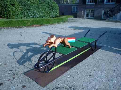 Edjo.nl | Springende hond